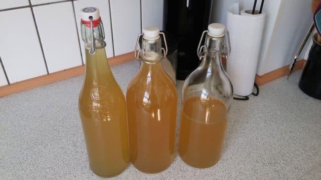 ca. 2,5 liter hjemmelavet hyldeblomstsaft