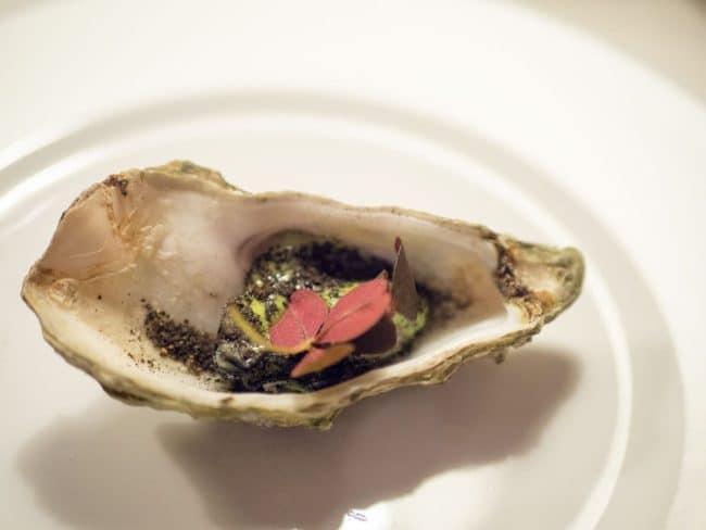 Grillede østers, dildmayo, maltjord, aske og rød skovsyre