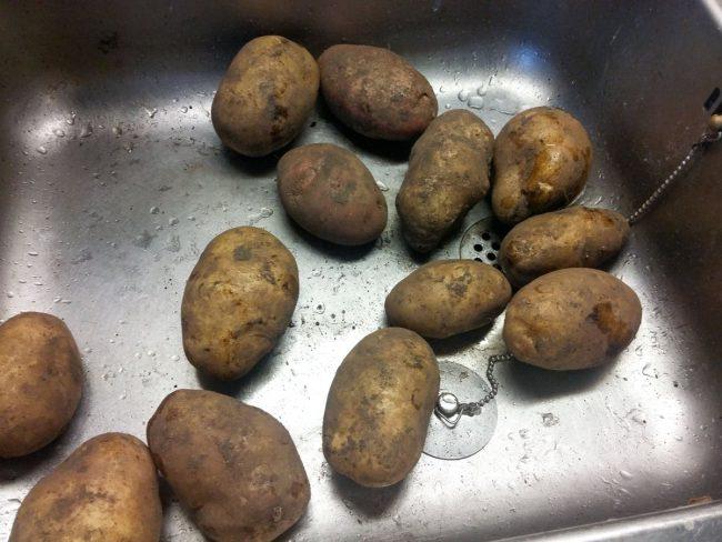 Det hele starter med kartofler