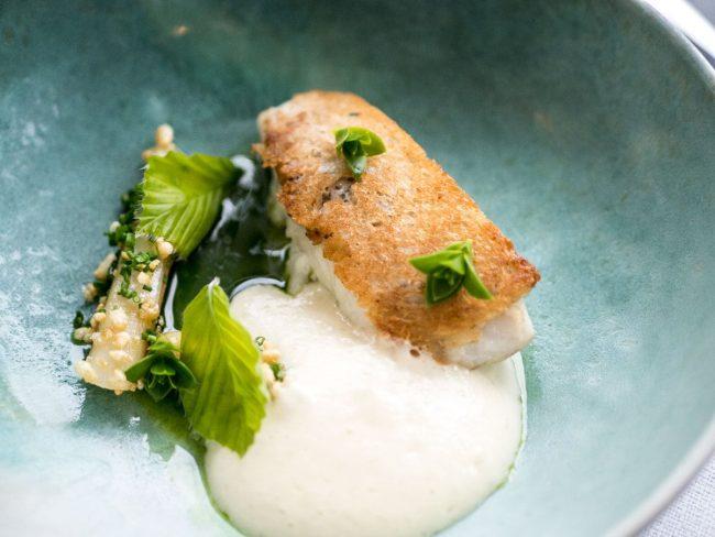 Frisk fangst fra Storebælt med syltede hvide asparges, lardo og morkler