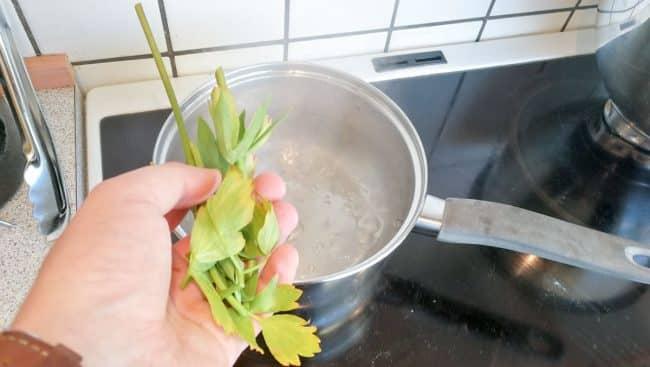 Løvstikke til kogevandet