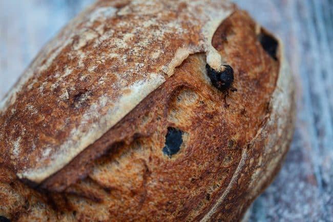 Olivenbrød opskrift - Friskbagt brød med sprød skorpe med oliven