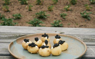 Nye danske kartofler, rygeostcreme og caviar